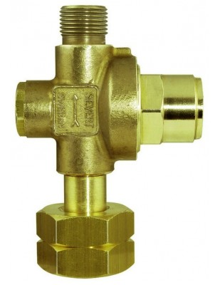 REMS Reductor de presión de propano