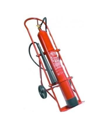 DirectExtintor Extintor Co2 10 kg con carro