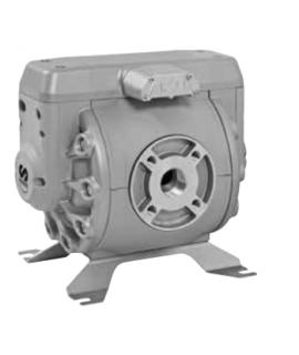 Bomba Neumática de Membrana DF250 para Diesel SAMOA